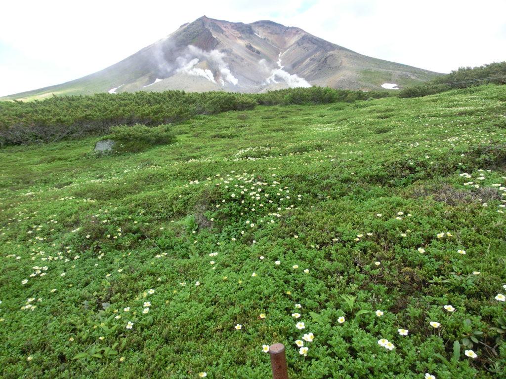 北海道大雪山